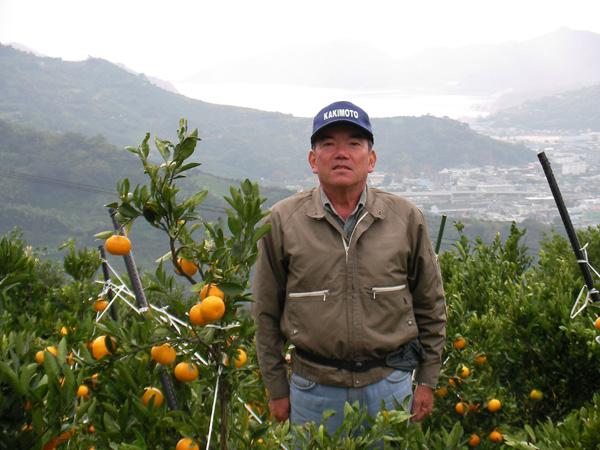芝田農園|有機率50%以上の肥料にこだわる低農薬栽培みかん